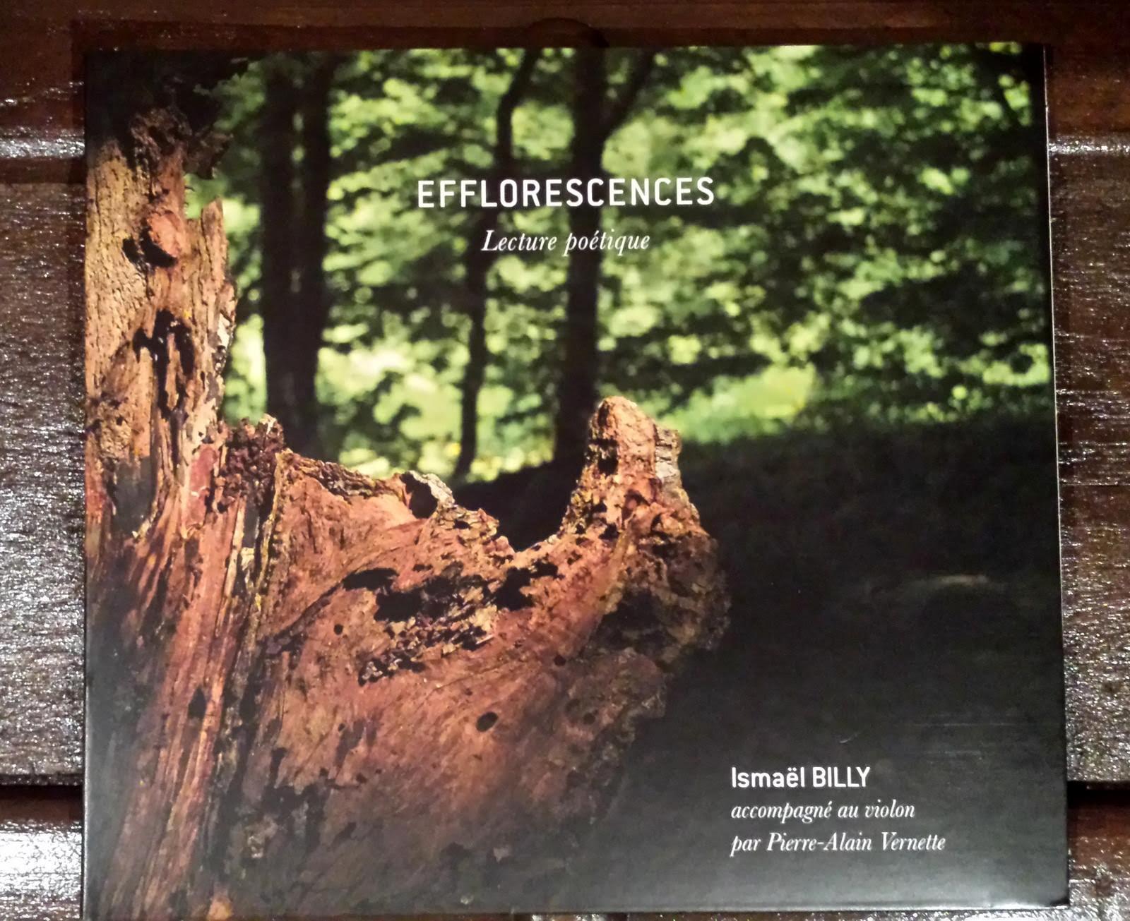 Cd efflorescences